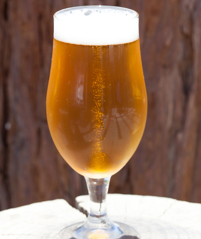 Shimmer Pilsner beer glass